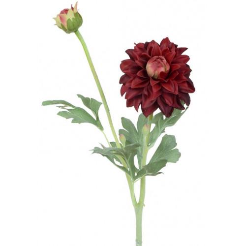 Dalia gumowa - gałązka 61 cm burgundy