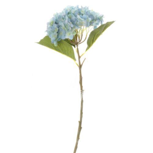 HORTENSJA POJEDYNCZA 52CM BLUE