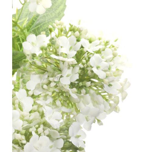 BUKIET KALINA X5 36CM WHITE GREEN