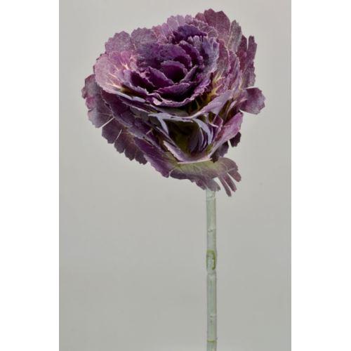 KAPUSTA CV14271 violet