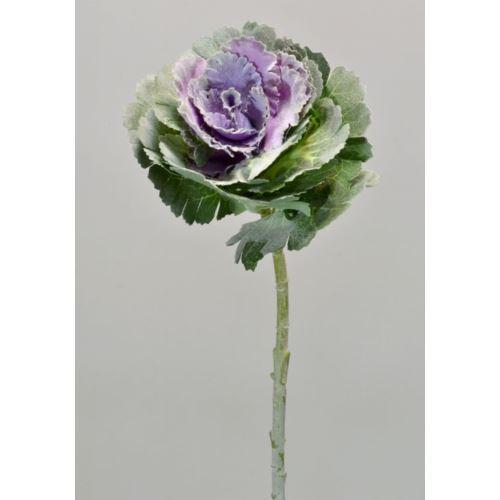 KAPUSTA CV14271 green violet