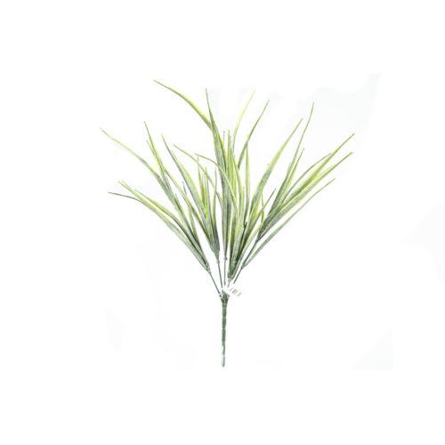 Pęczek trawek ozdobnych wysokość 45 cm
