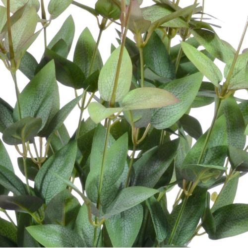 BUKIET BARWINEK X16 55CM LIU450 BURGUNDY GREEN
