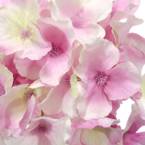 Hortensja główka 15cm sun644 deep pink