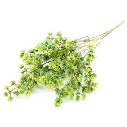 BUKIET PINIA 41CM GREEN