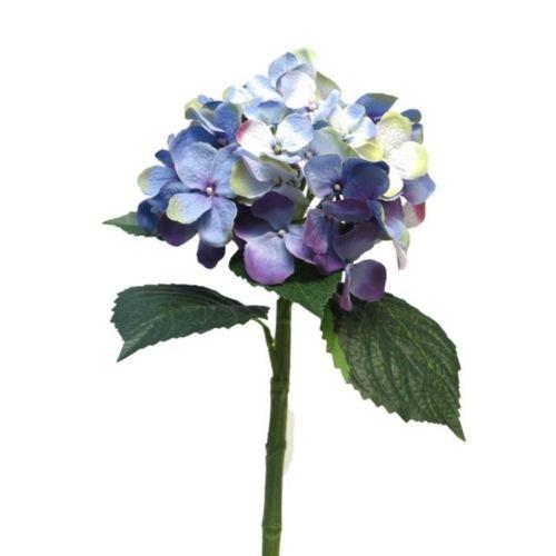 Hortensja Artist blue/lavender 48cm