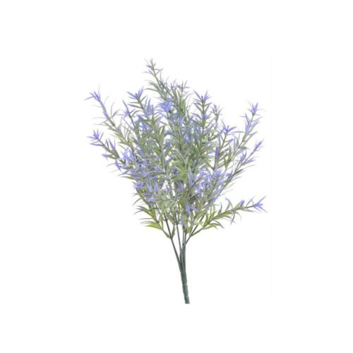 Asparagus densiflorus - sztucz. rosl.