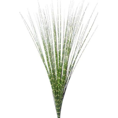 Onion grass bush ak32068 green-yellow