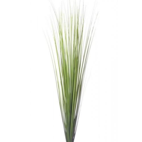 Onion grass bush ak32068 green