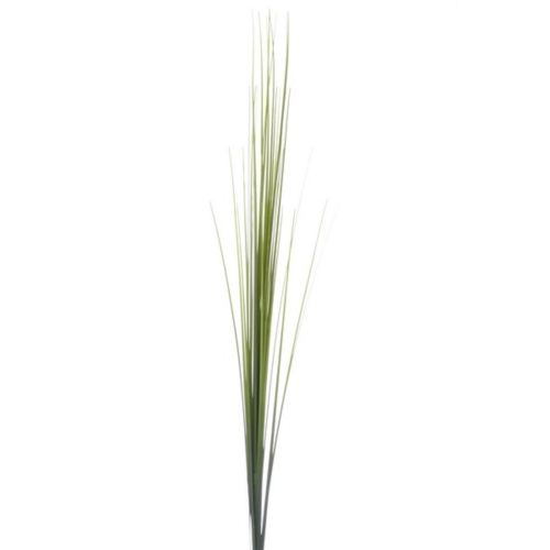 Onion grass single ak32074 green