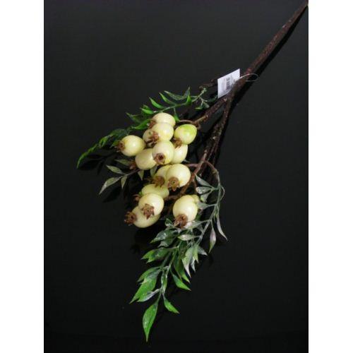 GAŁĄZKA Z OWOCAMI  cv05228 cream green