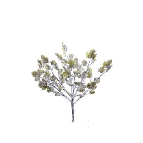 Bukiet liści/3572