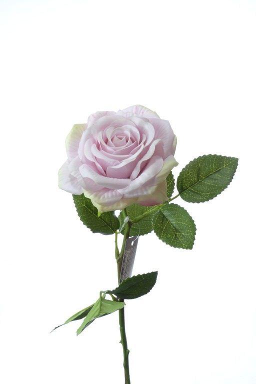 Rose pick RT Rodin mauve 32cm