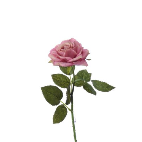 Rose pick RT Rodin old pink 32cm natural touch