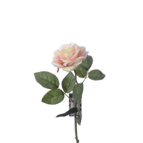 Rose pick RT Rodin peach 32cm natural touch