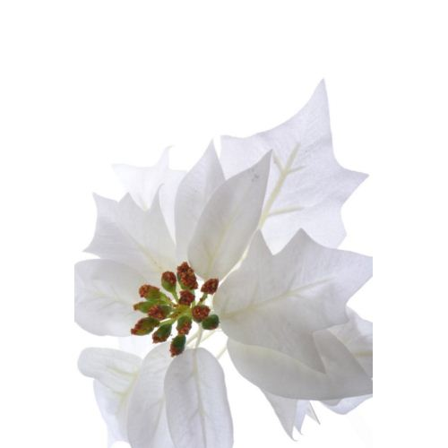 Poinsettia velvet head ./1397 white