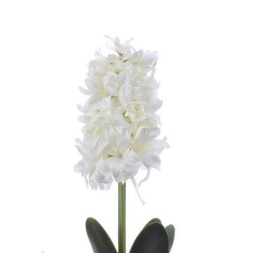 Hiacynt z cebulą 49cm aj62140  white