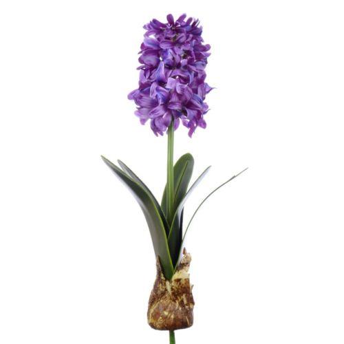 Hiacynt z cebulą 49cm aj62140  violet pink