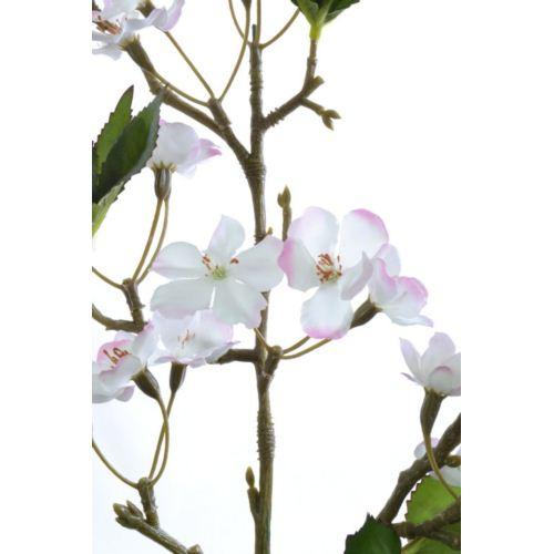 Jabłonka duża 102cm sun420 white lt pink