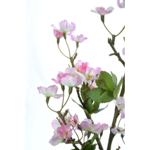 Jabłonka duża 102cm sun420 lt pink