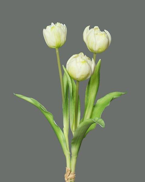 peony-tulip bundle x3 39 cm cream z-29,5