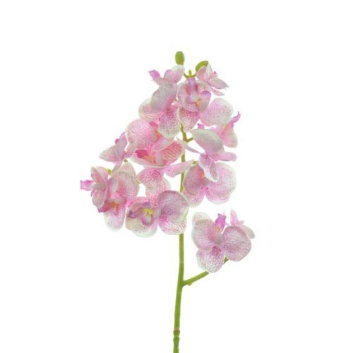 Storczyk drobny 58cm sun396 lt pink