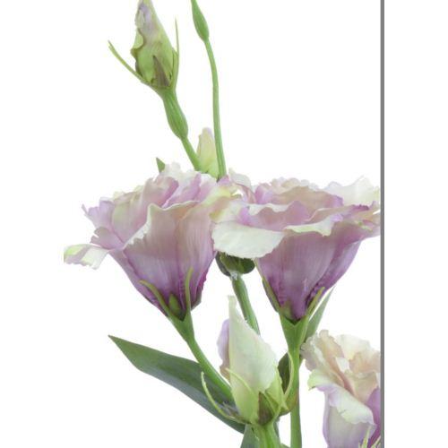 Eustoma gałązka 83cm sun345 powder pink/green