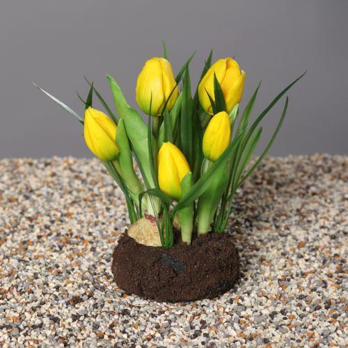 Tulipany w trawie, 18 cm, yellow, 12/60