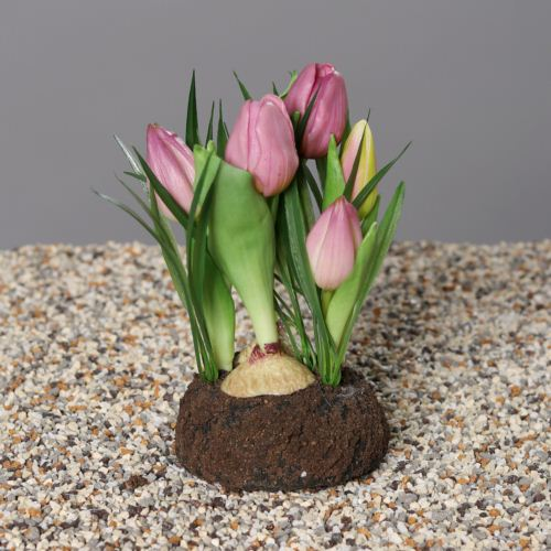 Tulip in mud with grass, 18 cm, lavender, 12/60