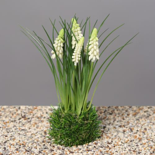 Muscari in grass, 23 cm, cream, 24/96
