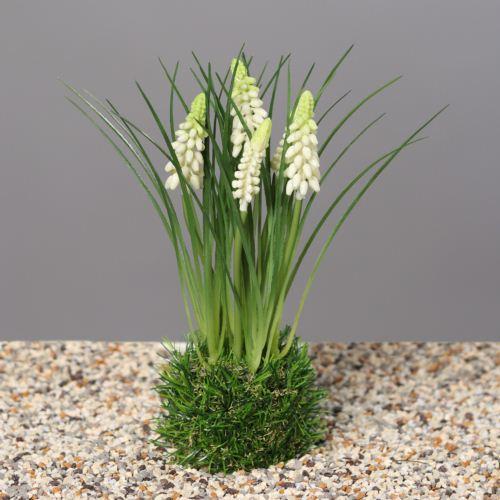 Muscari in grass, 23 cm, cream, 24/96