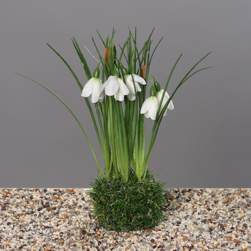 Snowdrop in grass, 22 cm, 24/96