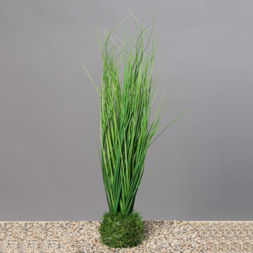 Grass in grass, 55 cm, 12/48