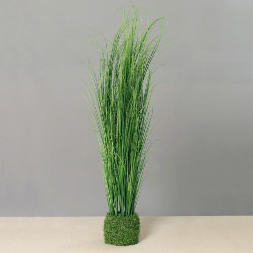Grass in grass, 117 cm, 4/12