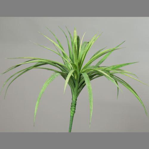 Trawa bukiet Reedgrass-bush 55 cm