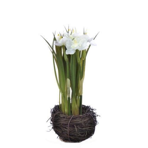 Narcyz w gniazdku 20 cm 35515-33 white