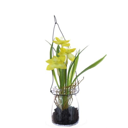 Narcyz w szkle 18 cm 35648-33 yellow