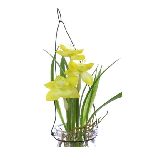 Narcissus in hanging glass 18 cm 35648-33 yellow