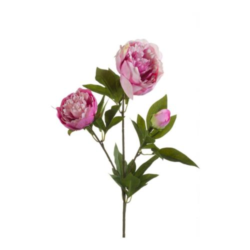 Peonia spray x3 70cm lt purple