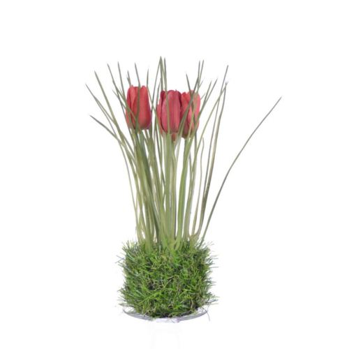 Tulip in grass  23 cm 35640-33 red