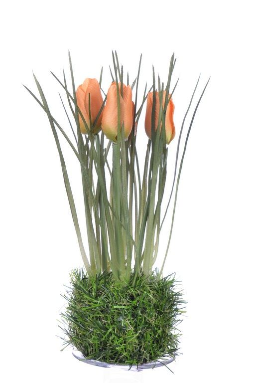 Tulip in grass  23 cm 35640-33 orange
