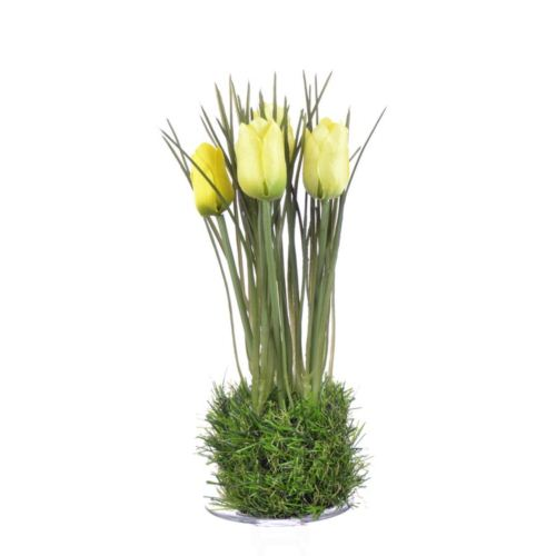 Tulipan in grass  23 cm 35640-33 yellow