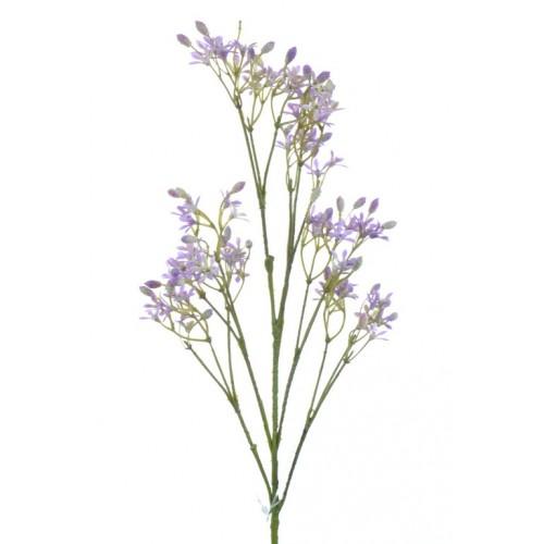 Allysum Conlie purple 63cm