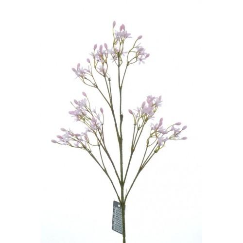 Allysum Conlie pink 63cm