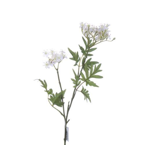 Sambucusblütenzweig x2 67cm weiß