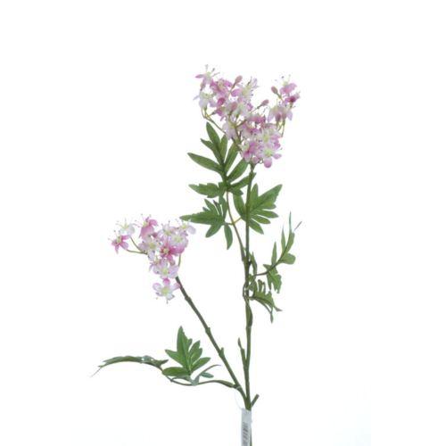 Sambucusblütenzweig x2 67cm weiß-rose