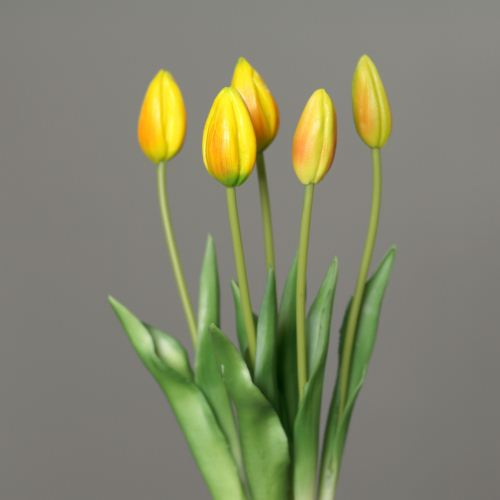 Tulip bundle x 5 45 cm  yellow orange 3701-60