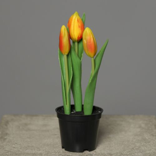 Tulipan in Pot PU 18 cm orange 3702-18