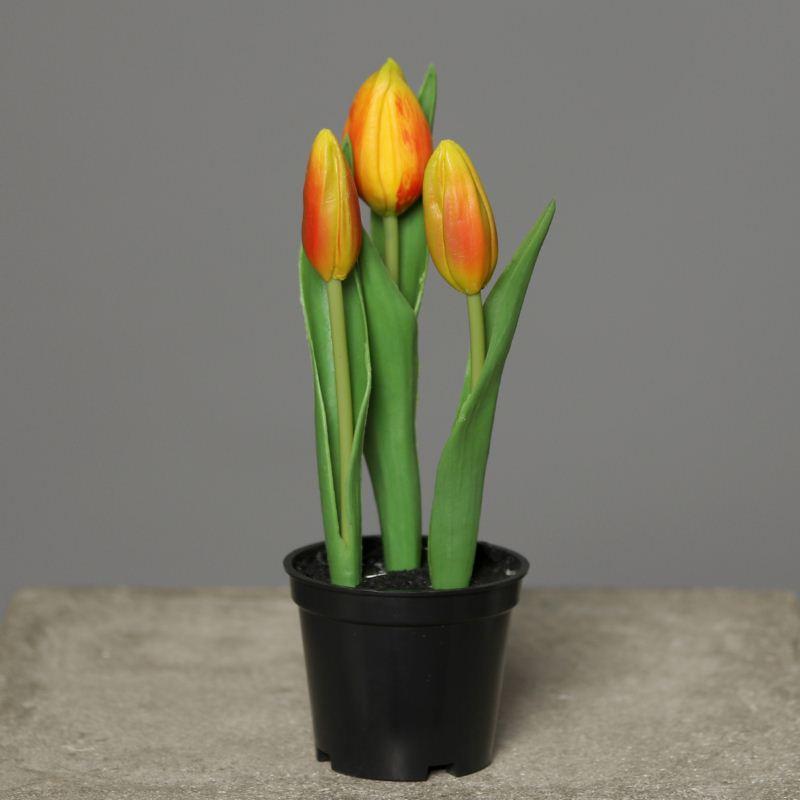 Tulips in Pot PU 18 cm orange