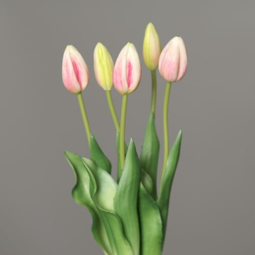 Tulip-bundle x 5 PU 45cm pink